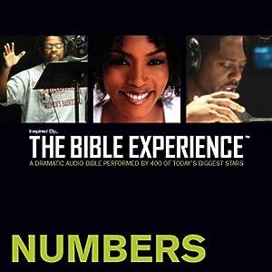 Numbers Audiobook