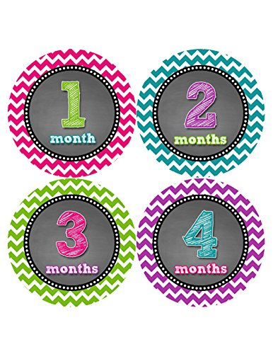 Months in Motion 423 Monthly Baby Stickers Baby Girl Month 1-12 Milestone Age Sticker Photo Prop