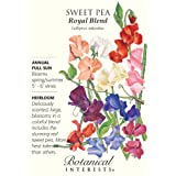 Sweet Pea Royal Blend Seeds