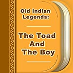 The Toad and the Boy | Old Indian Legends