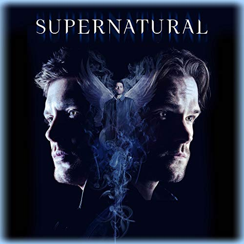 Blu-ray : Supernatural: Complete Fourteenth Season (3 Discos)