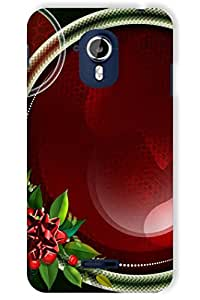 IndiaRangDe Case For Micromax Canvas Magnus A117 Printed Back Cover