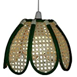 Lighting Web Company Tulip Shape Deep Dome Bamboo Shade in Green Cane with Natural Panels