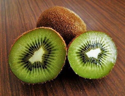 果物の女王 超甘~いフルーツキウイ 5.0KG 季節限定品 無農薬栽培