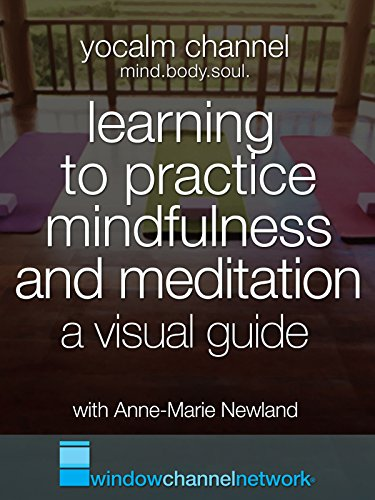 Learning to practice mindfulness and meditation. A visual guide