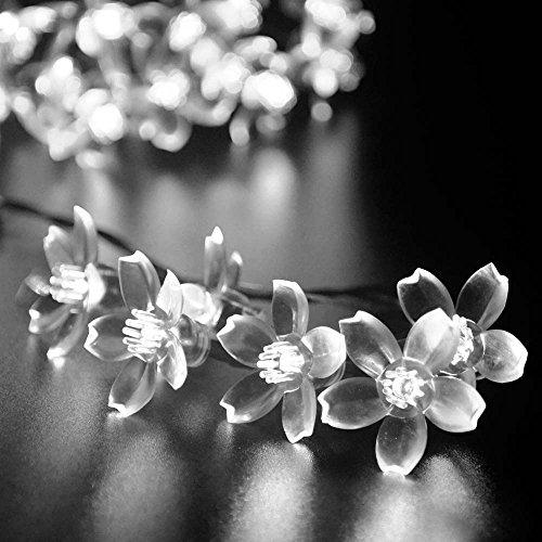 Ledertek Solar Fairy String Lights 21ft 50 Led White