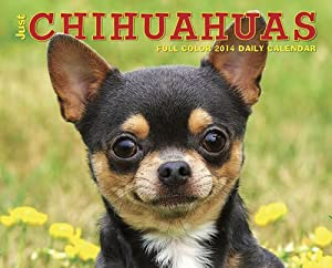 Just Chihuahuas - 2014 Box Calendar