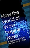 How the world of Wow begins Now!: A Beginners Guide to the Internet of Things (English Edition)