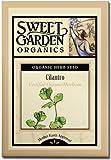 Cilantro (Coriander) - Certified Organic Heirloom Seeds