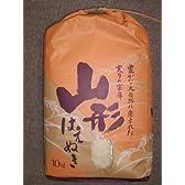 山形県庄内産 白米 はえぬき 米 10kg 【平成24年度産】 精米