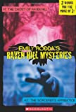 Raven Hill Mysteries: Ghost of Raven Hill/Sorcerer's Apprentice (0439779154) by Rodda, Emily