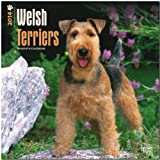 BrownTrout Welsh Terriers 2014 Wall