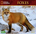 Cal 2017 Foxes National Geographic