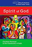 img - for Spirit of God: Christian Renewal in the Community of Faith book / textbook / text book