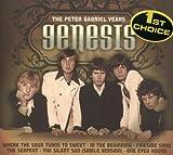 Peter Gabriel Years