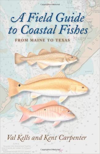 A Field Guide to Coastal Fishes: From Maine to Texas written by Valerie A. Kells