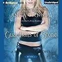 Guardians of Stone: The Relic Seekers, Book 1 (       UNABRIDGED) by Anita Clenney Narrated by Renee Raudman