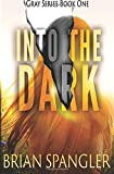 img - for Into the Dark (Gray) (Volume 1) book / textbook / text book