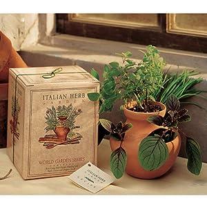 Grow your own italian herb garden kit for Indoor gardening amazon