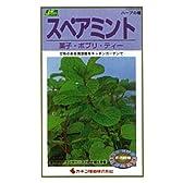 カネコ種苗 園芸・種 KS200シリーズ スペアミント 菓子・ポプリ・ティー 草花200 283