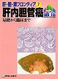 肝内胆管癌—基礎から臨床まで (肝・胆・膵フロンティア)