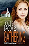 Gathering (PAVAD: FBI Romantic Suspense Book 12) (English Edition)