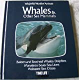 Whales and Other Sea Mammals (Wild, wild world of animals)