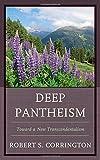 img - for Deep Pantheism: Toward a New Transcendentalism book / textbook / text book
