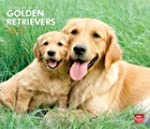 Golden Retrievers, For The Love Of 20...