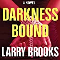 Darkness Bound Audiobook by Larry Brooks Narrated by James Patrick Cronin