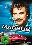 Magnum - Die komplette erste Staffel (6 DVDs) - Tom Selleck