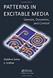 img - for Patterns in Excitable Media: Genesis, Dynamics, and Control book / textbook / text book