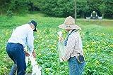 熊本県産 農薬不使用・有機栽培ヘチマ水 fu-uクレンジングウォーター 240ml