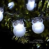 Snow Owl LED String Lights By Impress Life® on 10ft Copper Wire 40 Cold White LEDs with Remote for Thanksgiving, Christmas Eve, Baby Shower, Outdoor, Indoor Home Parties Decorations