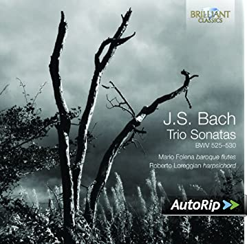 Bach: transcriptions diverses - Page 2 51winbOIkcL._SY355__PJautoripBadge,BottomRight,4,-40_OU11__