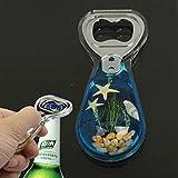Amber Style Blue Pattern Design Bottle Opener Soda Cola Beer Decapper~