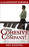 How Cohesive is your Company?: A Leadership Parable - Top-notch business performance is impossible until you cohesively align mission, vision, goals, strategy, execution & culture