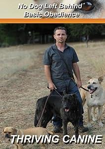 No Dog Left Behind: Basic Obedience