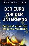 DER EURO VOR DEM UNTERGANG: Was Sie jetzt �ber das Geld und die Krise wissen sollten!