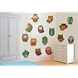 Rawpockets Decal ' Decorative Owl Birds' Multi-Color Extra Large Size Wall Sticker(Material- PVC Vinyl Matte Finish,Wall Coverage Area -Height -75cm X Width -155cm)( Pack Of 1)