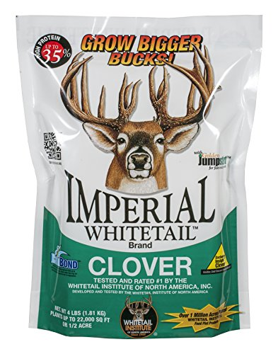 Whitetail Institute Imperial Clover Food Plot Seed (Spring and Fall Planting), 4-Pound (.5 acre) (Imperial Food Plot Seed compare prices)