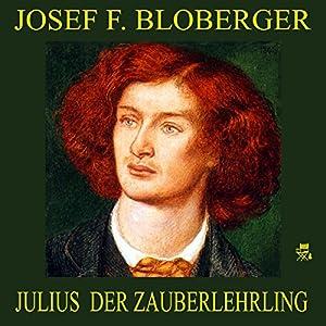 Julius, der Zauberlehrling Audiobook
