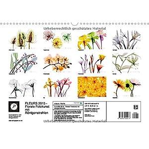 FLEURS 2015 - Florale Fotokunst mit Röntgenstrahlen (Wandkalender 2015 DIN A3 quer): Jens