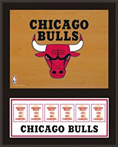 Chicago Bulls Sublimated 12x15 Plaque | Details: Championship Banner by Mounted Memories