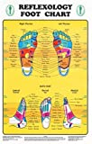 "Reflexology Foot Chart - Reflexology Zones Marked. 1 Laminated Chart 8"" x 11"""