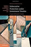 img - for Substantive Protection under Investment Treaties: A Legal and Economic Analysis (Cambridge Studies in International and Comparative Law) book / textbook / text book