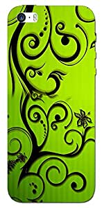 Connexions Accessories Designer Back Cover For Apple I phone 5S-Multi Color