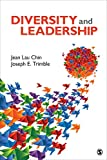 img - for Diversity and Leadership book / textbook / text book