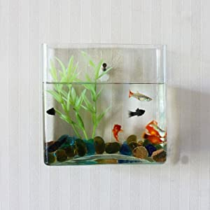 Wall Mount Hanging Beta Fish Bubble Aquarium Bowl Tank (Square)