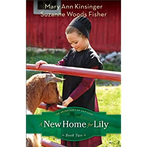 New Home for Lily, A (The Adventures of Lily Lapp)